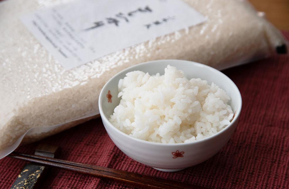 令和2年度米 新潟産コシヒカリ(従来品種)