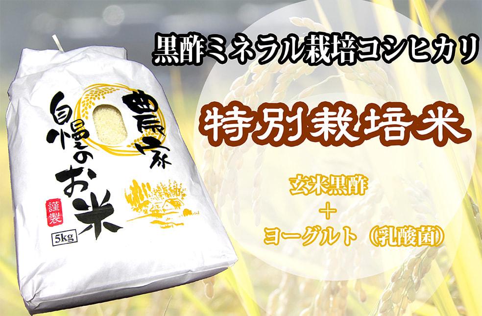 予約注文:令和2年度米 黒酢ミネラル栽培コシヒカリ(特別栽培米・従来品種)