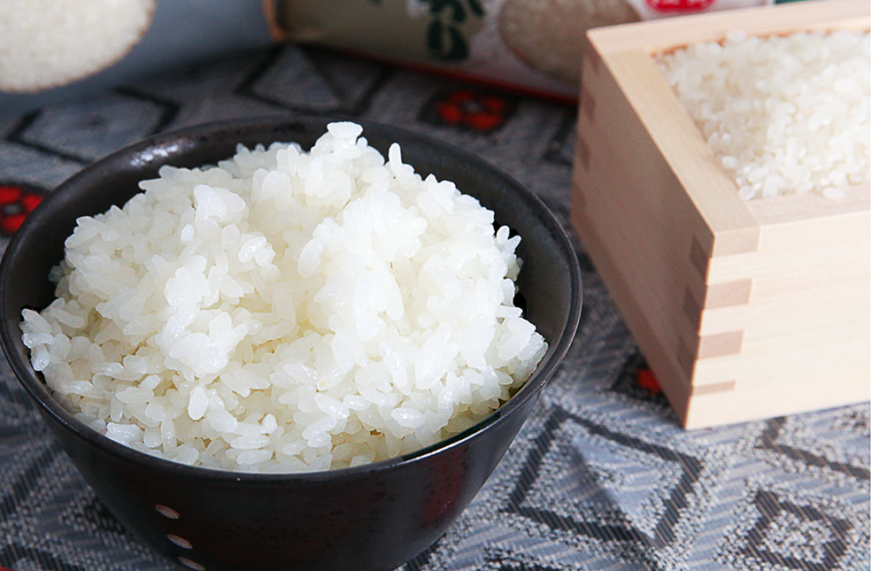 令和元年度米 魚沼産コシヒカリ(特別栽培米)