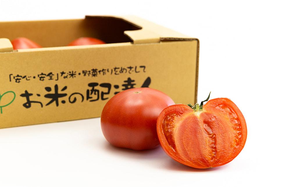 新潟県産トマト