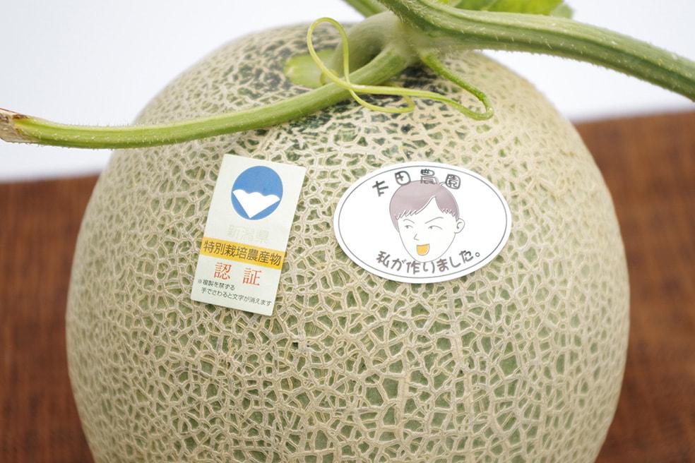 予約注文:新潟産 赤肉・青肉 メロン(特別栽培認証)