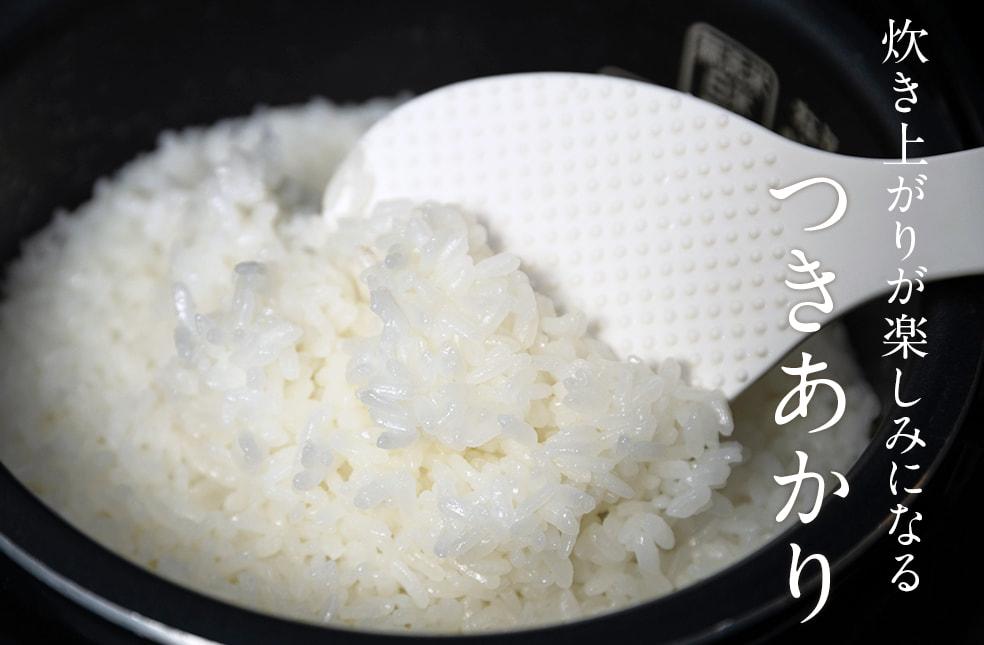 30年度米 炊き上がりが楽しみになるつきあかり