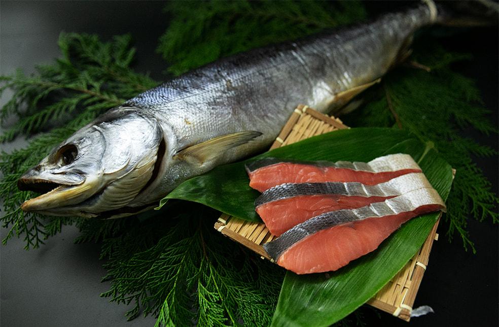 能登新の塩引き鮭