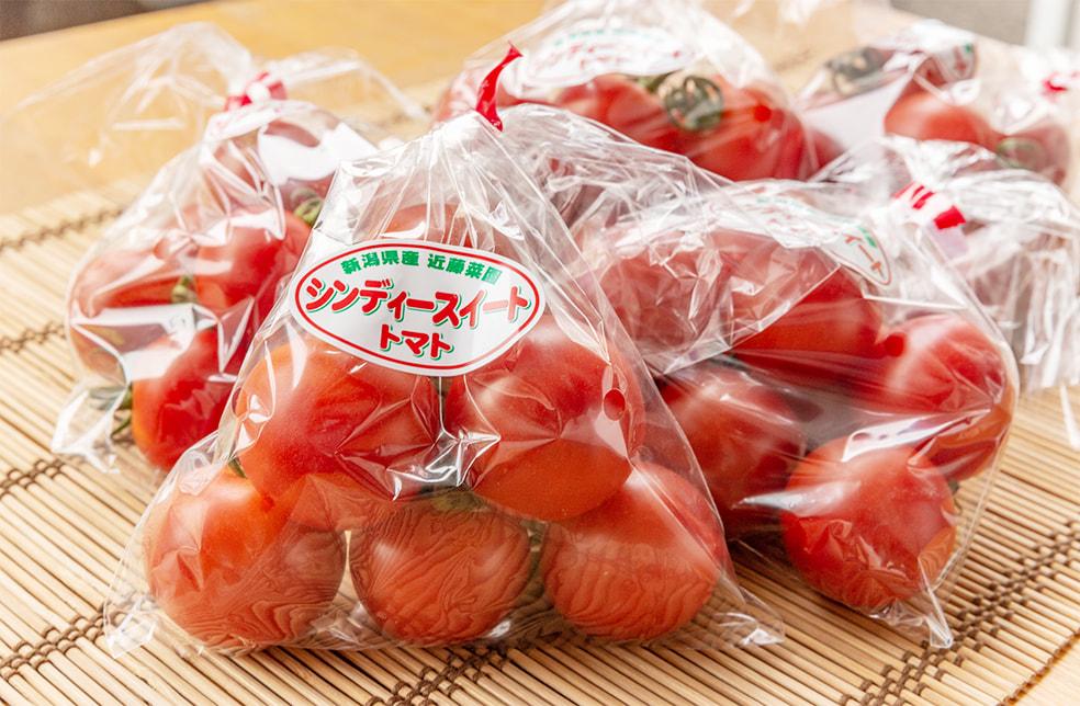 新潟産中玉トマト「シンディースイート」