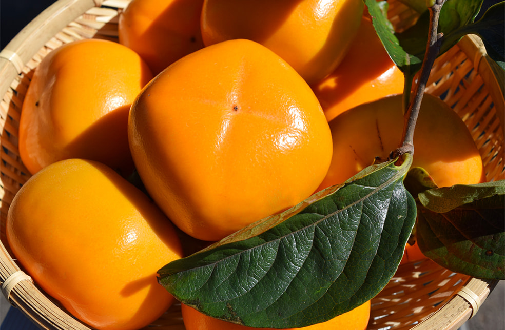 予約注文:新潟県産 八珍柿