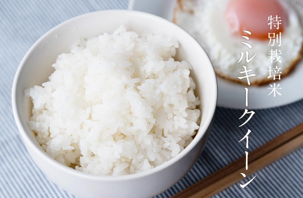 令和2年度米 新潟産ミルキークイーン(特別栽培米)