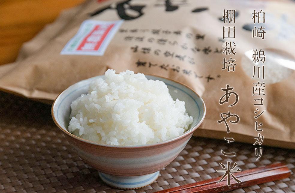 令和元年度米 柏崎 鵜川産コシヒカリ「あやこ米」(棚田栽培・天日干し)
