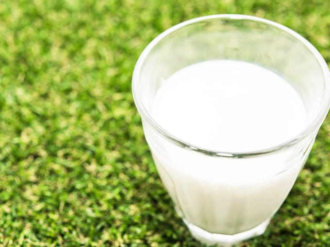 佐渡乳業乳製品