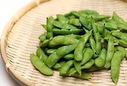 4.肴豆(9月中旬~10月上旬)