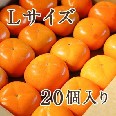 八珍柿 Lサイズ 20個入り