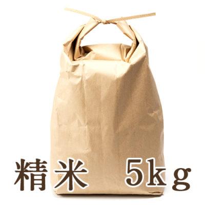 新潟産ゆきん子舞 精米5kg