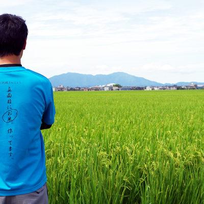 「真面目にお米、作ってます。」