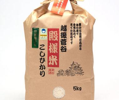 予約注文:令和元年度米 越後菅谷殿様米コシヒカリ(特別栽培・従来品種)