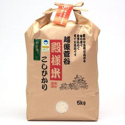 令和元年度米 越後菅谷殿様米コシヒカリ(特別栽培・従来品種)