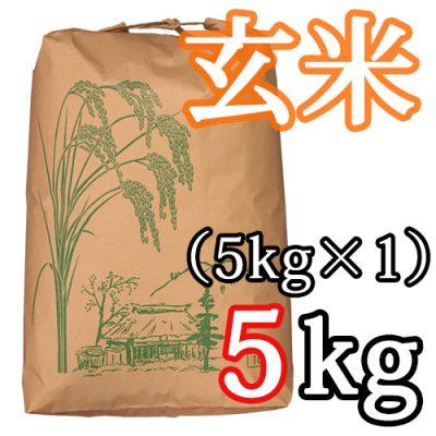 新発田産コシヒカリ(特別栽培米)玄米5kg