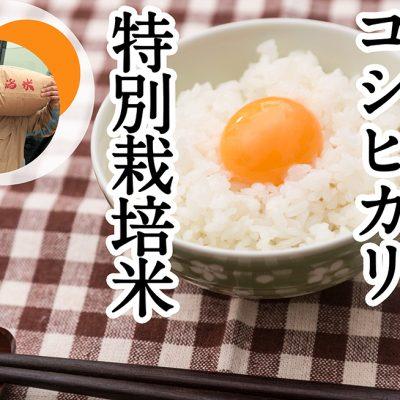 減農薬でつくられた特別栽培米
