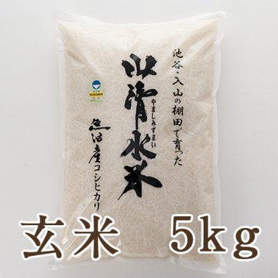 魚沼産 山清水米コシヒカリ 玄米5kg