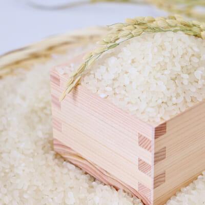 お米の食味を損なわない製法の「無洗米」