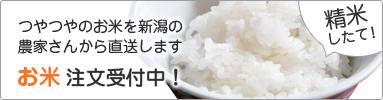 お米注文受付中!「米」カテゴリページへ