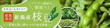 予約注文受付中!「枝豆・茶豆」カテゴリページへ