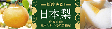 「新潟産日本梨」商品ページへ