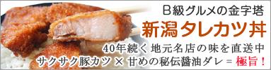 B級グルメの金字塔「新潟タレカツ丼」商品ページへ
