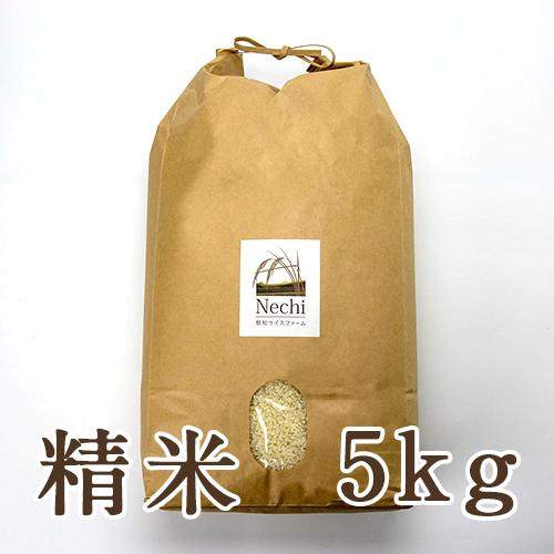 糸魚川 根知谷産コシヒカリ 精米5kg