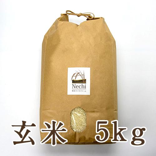 糸魚川 根知谷産コシヒカリ 玄米5kg