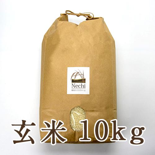 糸魚川 根知谷産コシヒカリ 玄米10kg