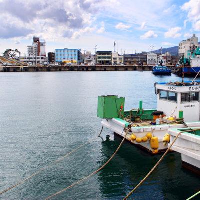 水産資源がとても豊富な両津港