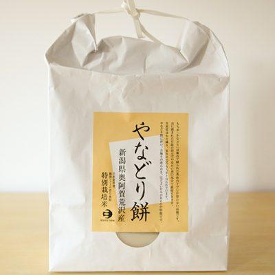 やなどり餅 500g(10個)×2