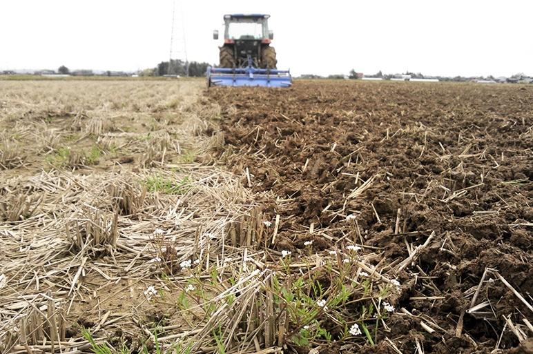 有機肥料・減農薬!こだわりの特別栽培米
