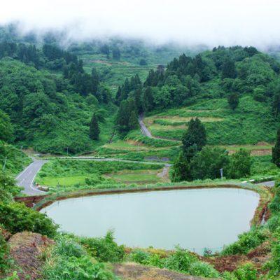 豊かな自然が広がる新潟県長岡市山古志の地域