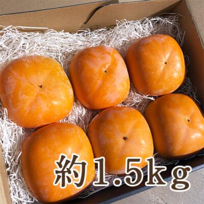 佐渡産 八珍柿 厳選大玉 1.5kg前後
