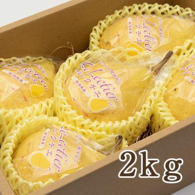 【贈答用】ル・レクチェ 2kg(4~6玉)
