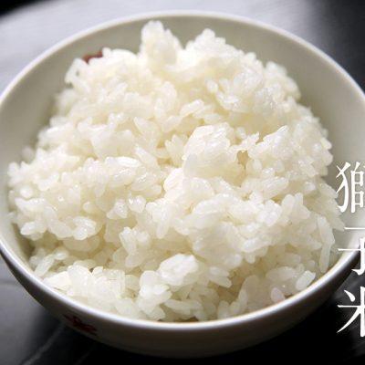 29年度米 見附産コシヒカリ「獅子米」(特別栽培米)
