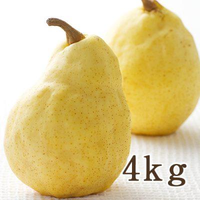 【贈答用】ル・レクチェ 4kg