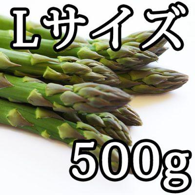 グリーンアスパラガス Lサイズ お試し500g
