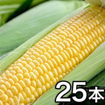 津南産とうもろこし(黄色 2Lサイズ) 25本セット