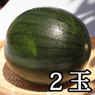 津南産 黒小玉スイカ 2玉