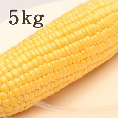 鬼もろこし 5kg