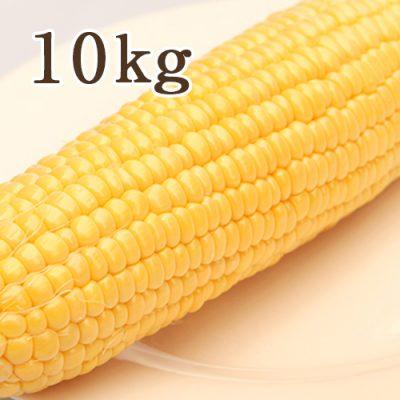 鬼もろこし 10kg
