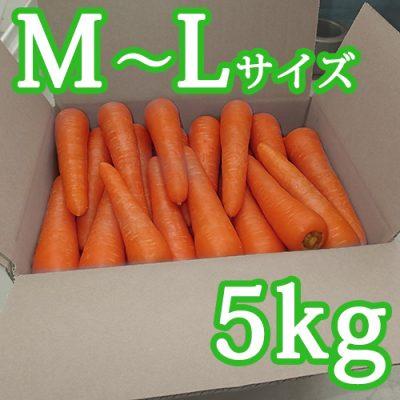 雪熟成にんじん(M~Lサイズ)5kg