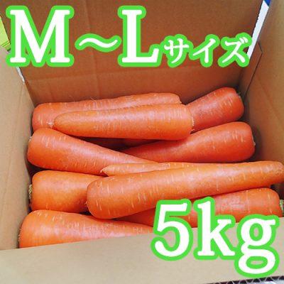 雪下にんじん(M~Lサイズ)5kg