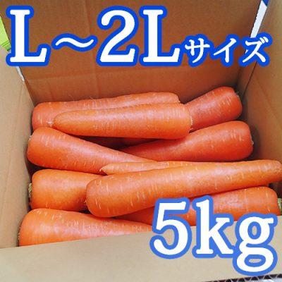 雪下にんじん(L~2Lサイズ)5kg