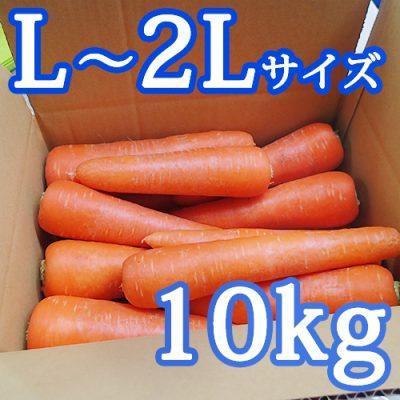 雪下にんじん(L~2Lサイズ)10kg