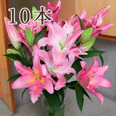オリエンタルユリ ピンク10本
