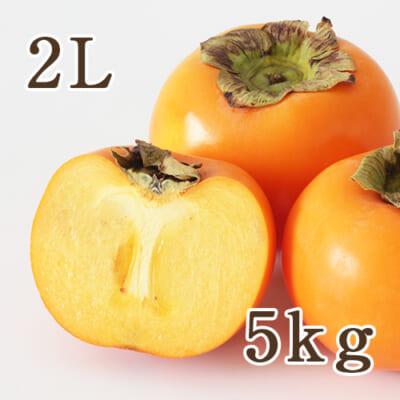 【贈答用】佐渡 羽茂産 八珍柿 2Lサイズ 5kg(21玉)