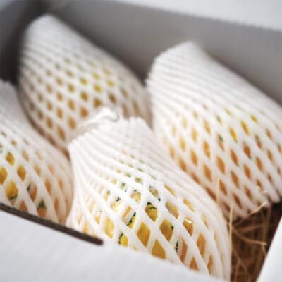 【贈答用】佐渡 羽茂産 ル・レクチェ 1.5kg(2~5玉)