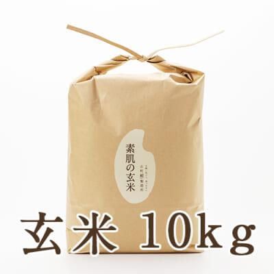 新潟産 ミルキークイーン「素肌の玄米」10kg